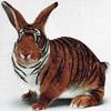 smileys 25788-funny_bunny.jpg