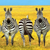 smileys 26563-zebras.jpg