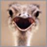 smileys 27292-1155161480_075.jpg